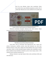 Lap PBL 2. Anafilaktoid, DK, Tata Laksana