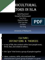 socioculturalfactorsinsla-100217020912-phpapp01