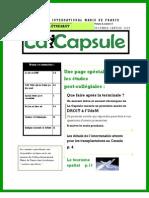LA CAPSULE - DÉCEMBRE - JANVIER 2009