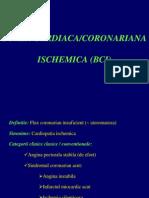 C6-7 - BCI