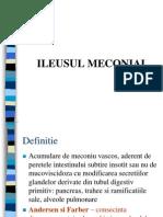 Ileus Meconial