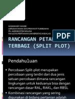 Rancangan Petak Terbagi (Split Plot)