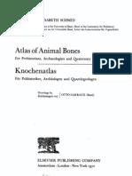 Atlas of Animal Bones E. Schmid