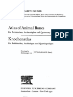 Atlas of Animal Bones E. Schmid