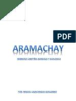 ARAMACHAY - SINCOS