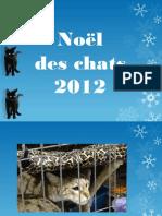 Noël des Chats 2012 - Laval, Qc