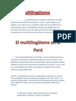 El multilingüismo es  aquel fenómeno suscitado a raíz del uso de varios idiomas en un contexto determinado  es decir