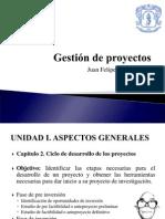 3. Ciclo de Dearrollo de Los Proyectos. Identificacion de Oportunidades