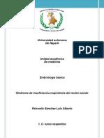 Portafolio 2 de Embrio SDR