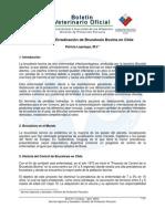 BVO Avances Proyecto Erradicacion Brucelosis