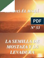 53 La Semilla de Mostaza y La Levadura