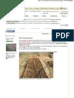 ABONO VERDE (lentejas) - Foro de InfoJardín