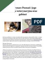 Szczesliwy Kot Dorota Suminska