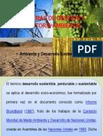 Ambiente y Desarrollo Sostenible