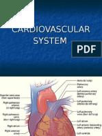 Cardiovascular - Part 2
