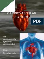 Cardiovascular - Part 1