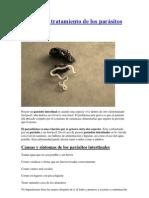 Síntomas y tratamiento de los parásitos intestinales
