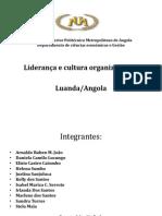Liderança e cultura organizacional