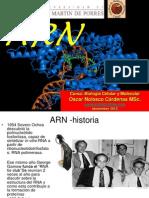 CLASE 14- ARN.pptx