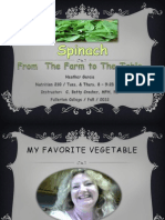 Spinach From Farm to Table PPT