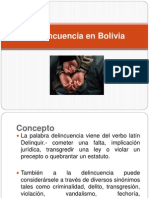 La Delincuencia en Bolivia