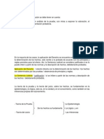 R.P. PRUEBAS Y ALEGATOS DE CONCLUSIÓN.