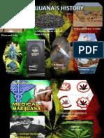 Marijuana History
