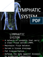 23424331 Lymphatic System
