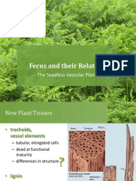 BIO1 - Ferns and Their Relatives