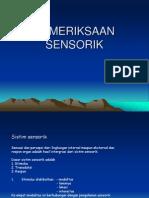 Sistem Saraf Sensori