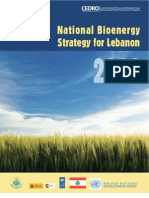 Executive Summary Bioenergy for Lebanon