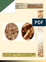 2009 Brazil Biomass - Wood Chips-Pellets-Briquette