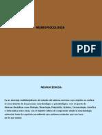 Neuro Psicología