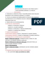Ficha Para Estudiar E.F.