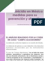 Presentacion Chiapas Micheel