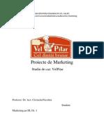 Proiecte de Marketing - Studiu de Caz VelPitar