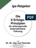 6-Prinzipien-Unternehmensfuehrung