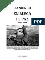 BAIANO CANDINHO EM BUSCA DE PAZ