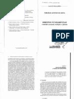 Virgilio Afonso da Silva-Direitos Fundamentais(Teoria dos Princípios)