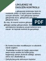 Glukoneogenez (Prof. Dr. Sabahattin Muhtaroğlu)