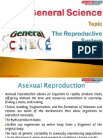 34(A) The Reproductive System