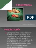 ORQUIECTOMÍA PUBLICACIOIN (1)