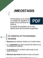 Homeostasis 1