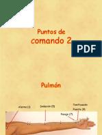 7ma. Clase P. de Comando 2 Tecnicas Acupuntura-1