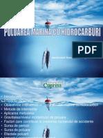 Poluarea Cu Hidrocarburi-final