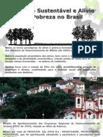 Turismo Sustentável e Alívio da Pobreza no Brasil