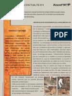 Arkéfact Bulletin Actualité 4