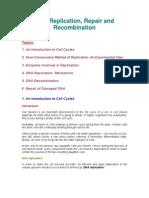 Examville.com Quick Review Guide - DNA Replication, Recombination & Repair