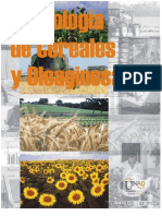 Tecnologia de Cereales y Oleaginosas