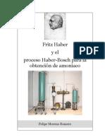 Proceso de Haber